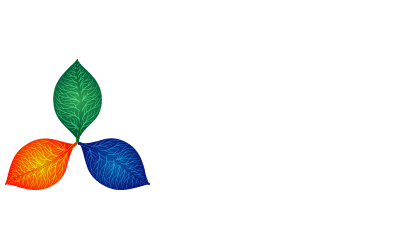 CMD MH